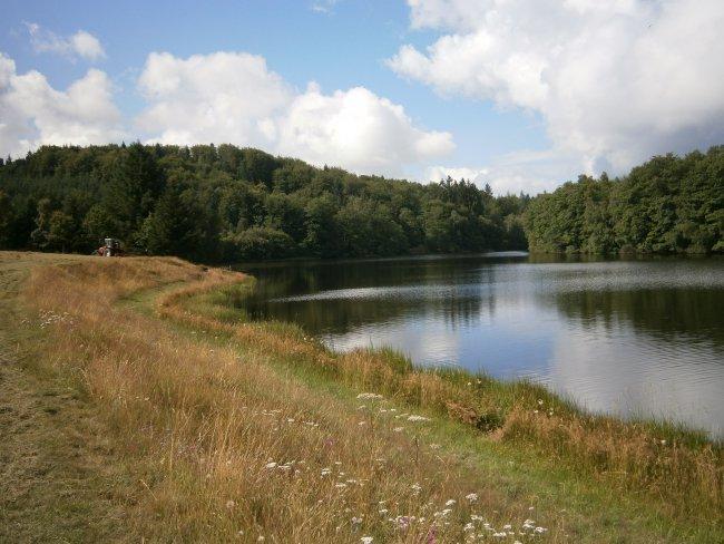 Eté au Chalet de l'étang de Flayat
