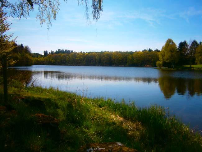 L'étang et le chalet