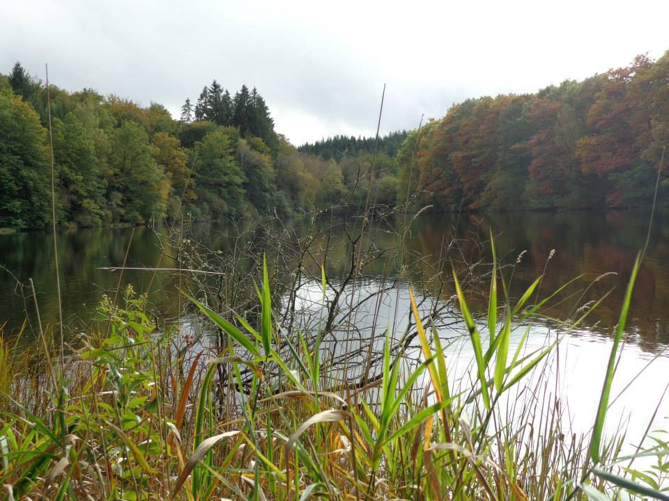 Vue de l'étang de Flayat