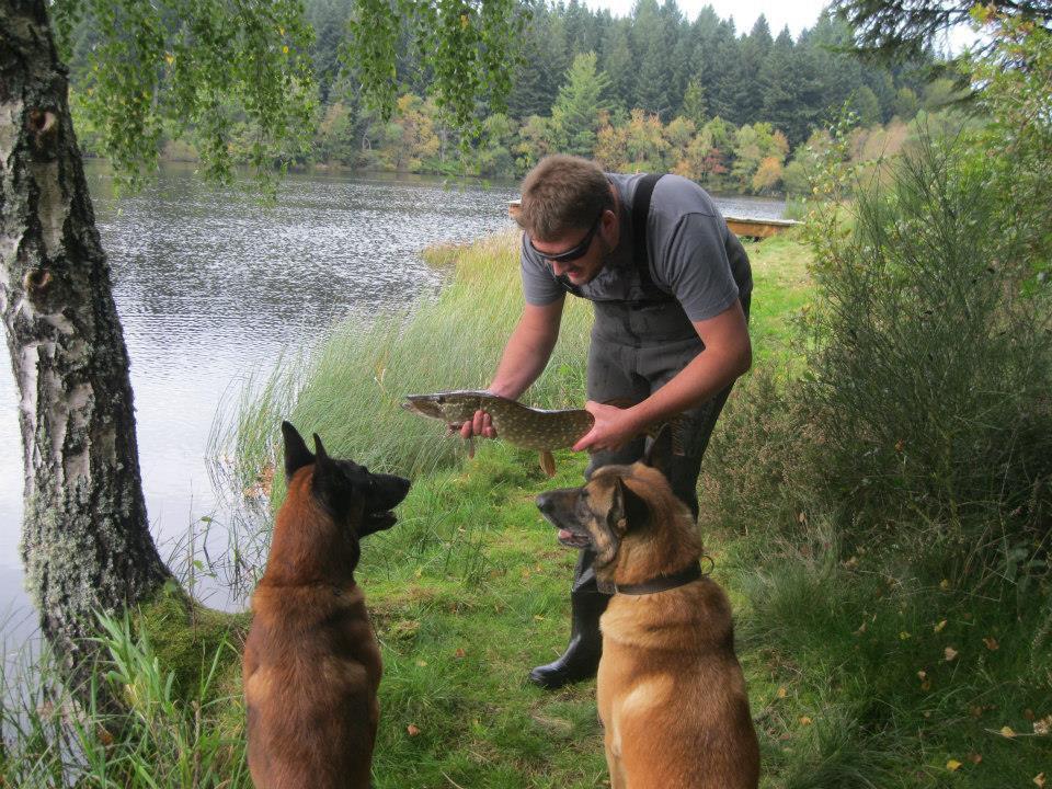 Erwin avec Fox et Kouma